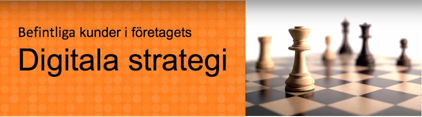 Befintliga kunder i företagets Digitala strategi